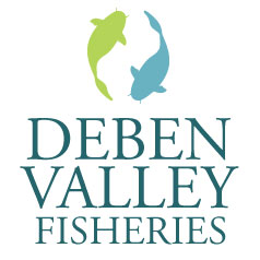 Deben Valley Fisheries - Suppliers of the finest quality specimen carp